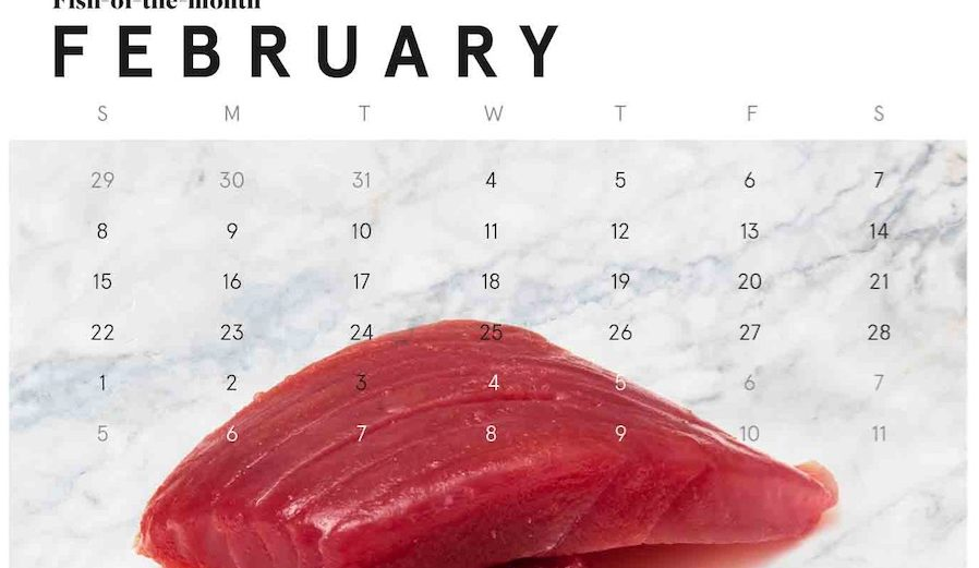Catch of the Month - Yellowfin Tuna