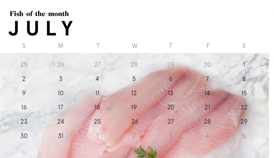 1200_013_WBD_Catch-of-the-month-JULY-Ibethelast