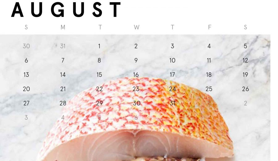 1200_013_WBD_Catch-of-the-month-AUGUST-feature v3